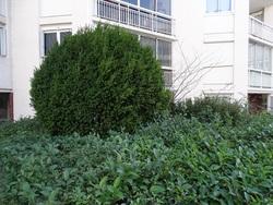 Appartement - 83100 Toulon